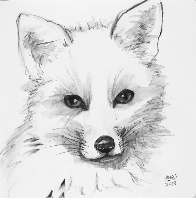 Daily Art 08-03-2018 sketch of a fox