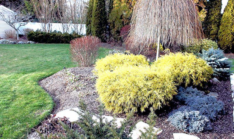 guide  northeastern gardening garden bloggers bloom