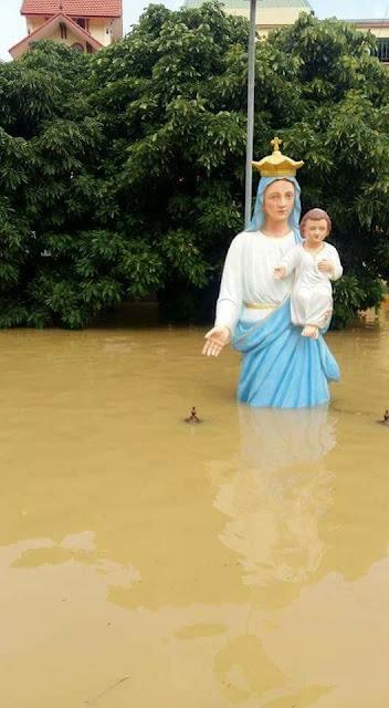 Toàn cảnh lũ lụt tại Ninh Bình và hoạt động cứu trợ tại Thanh Hoá