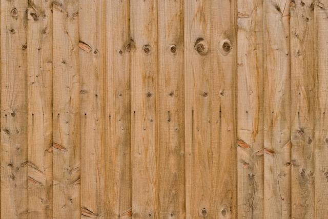 Sharp light wood fence texture