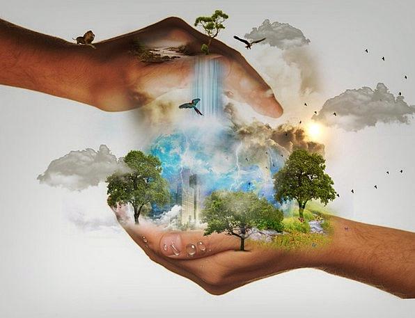 Temas Ambientales, Ecológicos