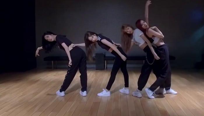 BLACKPINK -  DDU-DU DDU-DU  ( Dance Ver )