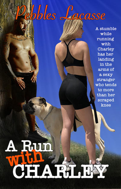 A Run with Charley cover