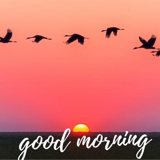 Best 75 + goodmorning image | good morning love images | 2020