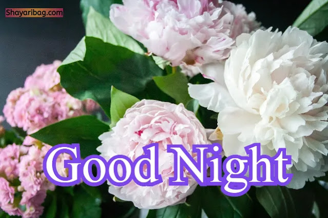 Good Night Cute Flowers Images
