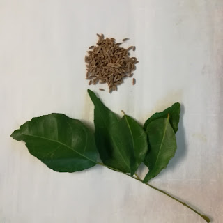 cumin seed and curry leaf