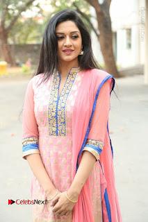 Actress Vimala Raman Stills in Beautiful Pink Salwar Kameez at (ONV) Om Namo Venkatesaya Press Meet  0059.JPG