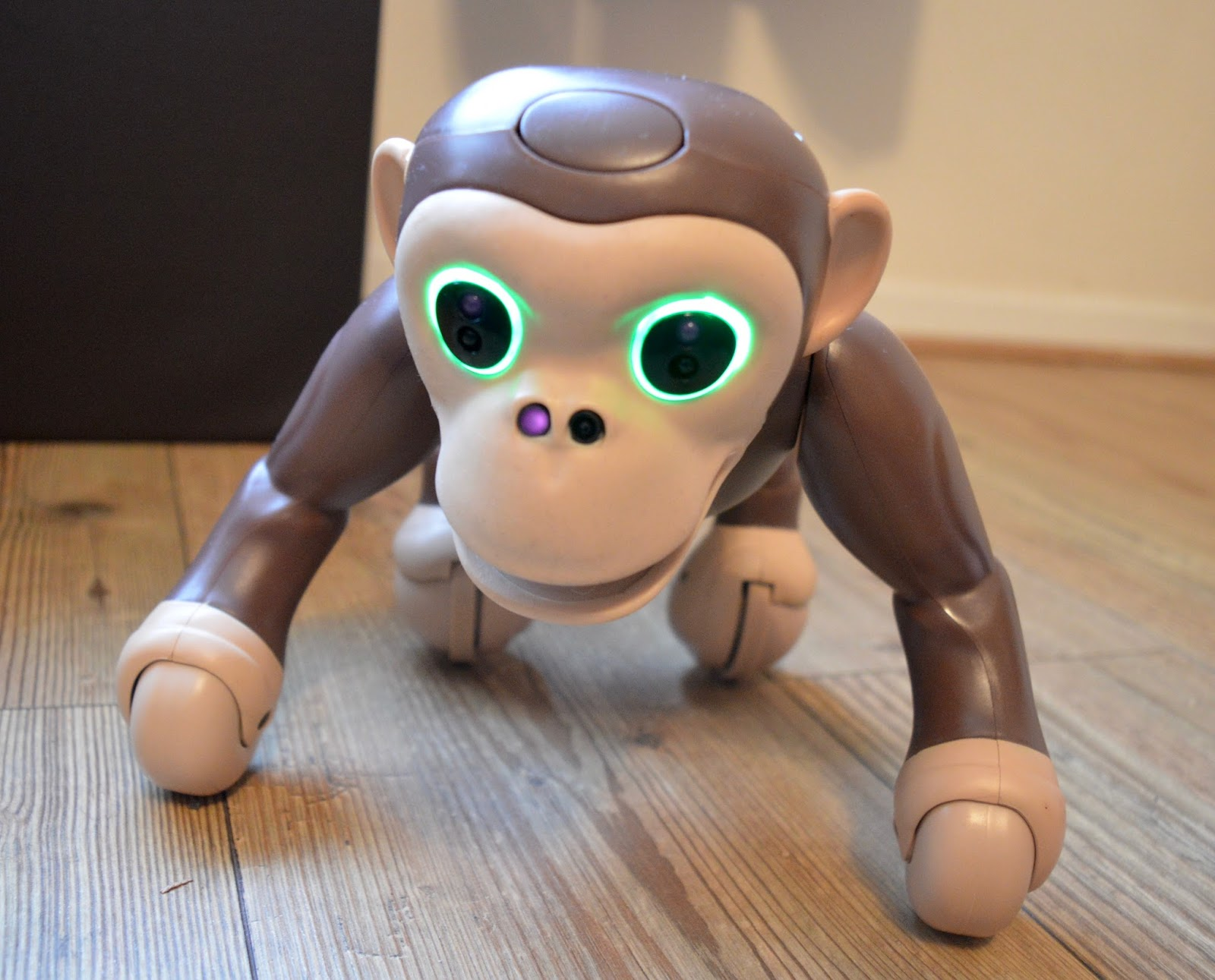 Zoomer Chimp Review | guard mode