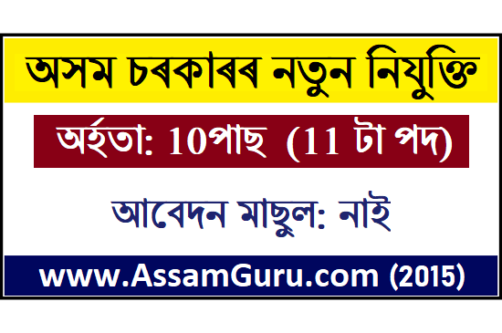 BRM Govt. Model College, DoomDooma Job 2020