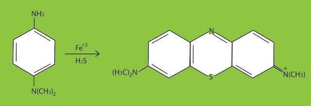 تفاعل فودجيفار لتحديد المركبات الأليفاتية متعددة الهالوجين
