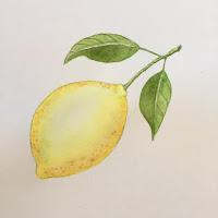 watercolor6 - Freeform Friday: Watercolor the Easy Way - Sara Berrenson + A GIVEAWAY