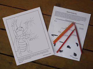 Two activity pages to teach kids about bugs