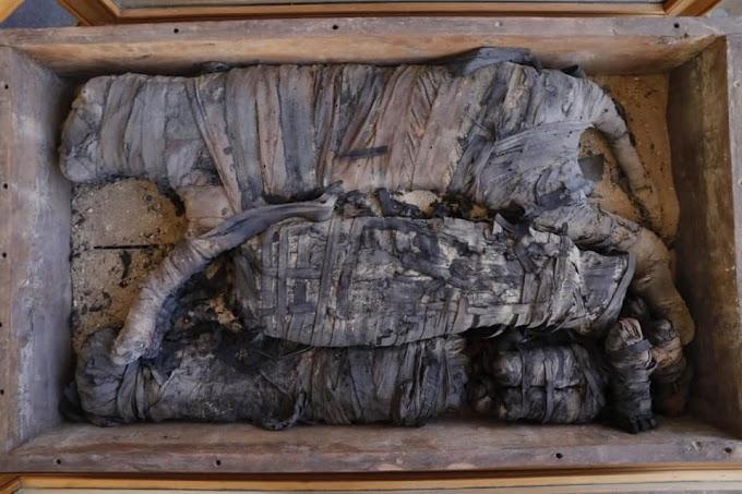 Αίγυπτος : Μούμιες  ζώων αλλά και άλλες ανακαλύψεις στη νεκρόπολη Saqqara