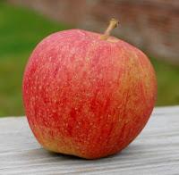 Large orange-red apple