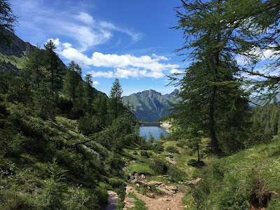 View north from the trail while descending, view of Lago Marcio