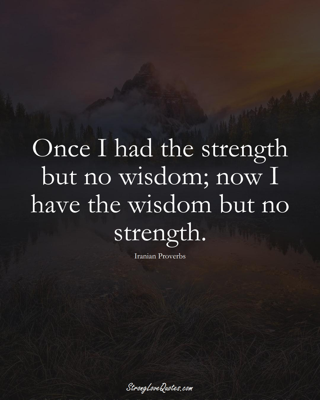 Once I had the strength but no wisdom; now I have the wisdom but no strength. (Iranian Sayings);  #MiddleEasternSayings