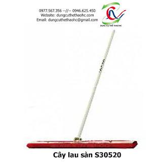 Cây lau sàn S30520