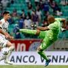 www.seuguara.com.br/Palmeiras/Bahia/Brasileirão 2021/26ª rodada/
