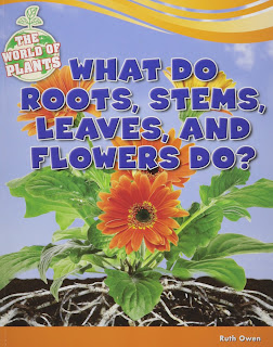 Books About Plants-What Do Roots, Stems, Leaves, and Flowers Do?