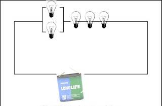 Real appearance 5 mixed bulbs