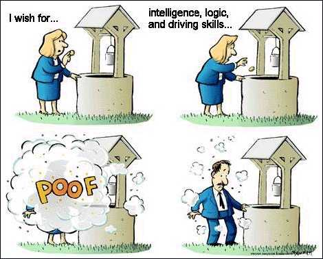 I wish for intelligence, logic, and driving skills