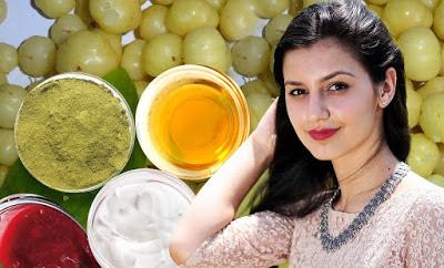 amla-curd-hair-pack-in-hindi, Amla-Curd-Hair- Pack, आंवला -दही- हेयर- पैक, बालों को रखे सुन्दर आंवला दही हेयर पैक, amla- dahi- hair- pack