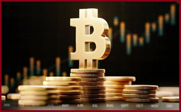 Should I add some bitcoin to my portfolio worldfree4u.site