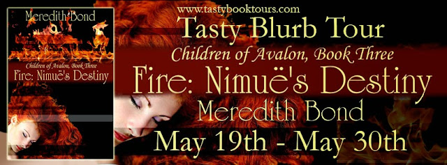 http://tastybooktours.blogspot.com/2014/05/now-booking-tasty-blurb-tour-for-fire.html
