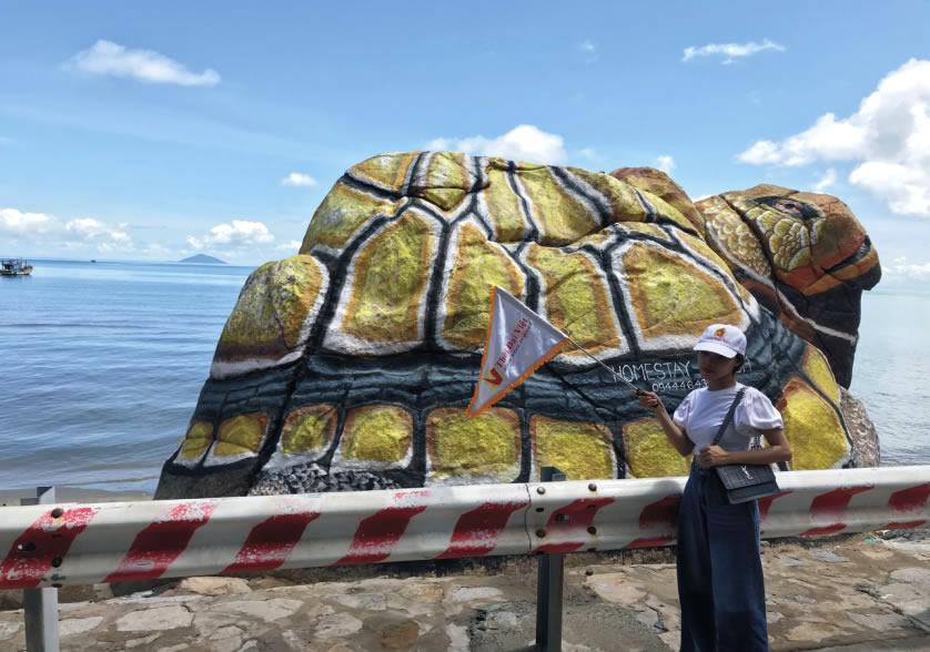 Hòn đá hình rùa tại đảo Hòn Sơn