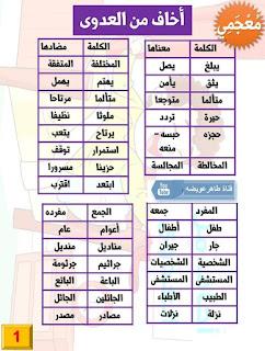 معجم لغويات الصف الثالث الابتدائي الترم الأول كامل