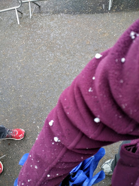 Tayto Park - Snow on my arm