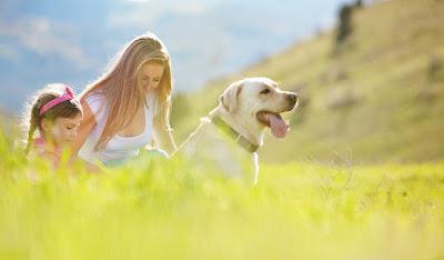 Hãy tìm cho mình một người bạn, bạn sẽ thấy hạnh phúc vô cùng