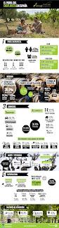 Enoturismo-Infografía