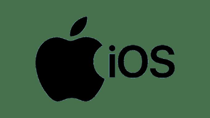 Advanced iOS Application Exploitation - SlashiOS