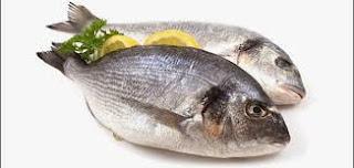 السمك و لاعب كمال الأجسام و (مقارنة بين أفضل أنواع السمك)