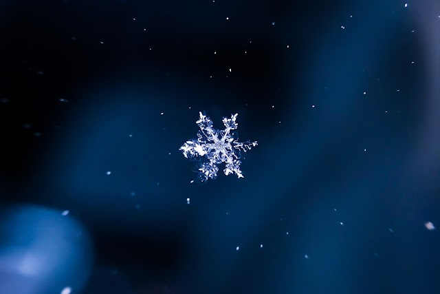 Explore More In Data Warehousing Using The Snowflakes Training And Certification