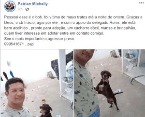 Cão é libertado e homem preso pela PM por agredir o animal