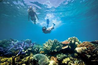 Snorkeling Pantai Timur Pangandaran