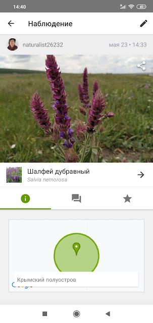 приложения для определения растений и животных
