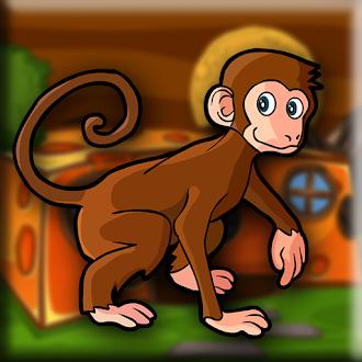 Games2Jolly Rhesus Macaque Escape