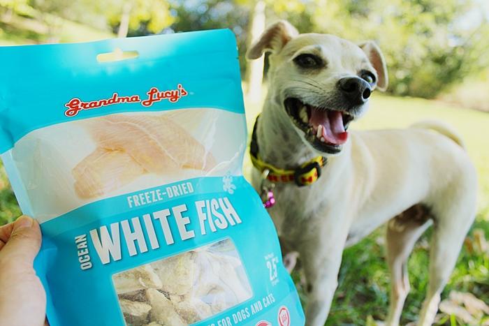 White Fish Dog Treats