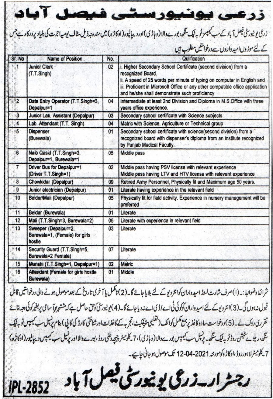 Latest Jobs in University of Agriculture Faisalabad  UAF 2021Latest Jobs in University of Agriculture Faisalabad  UAF 2021Latest Jobs in University of Agriculture Faisalabad  UAF 2021Latest Jobs in University of Agriculture Faisalabad  UAF 2021Latest Jobs in University of Agriculture Faisalabad  UAF 2021Latest Jobs in University of Agriculture Faisalabad  UAF 2021Latest Jobs in University of Agriculture Faisalabad  UAF 2021Latest Jobs in University of Agriculture Faisalabad  UAF 2021Latest Jobs in University of Agriculture Faisalabad  UAF 2021