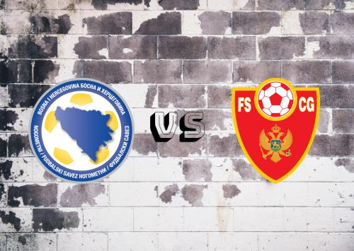 Bosnia-Herzegovina vs Montenegro  Resumen