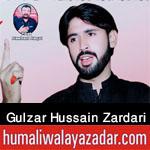 https://aliwalayazadar.blogspot.com/2020/08/gulzar-zardari-nohay-2021.html
