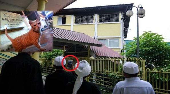 Kebakaran Tahfiz Ittifaqiyah, PELIK Kucing Selalu Berkumpul DEDAH Sesuatu Yang MENGEJUTKAN !!!