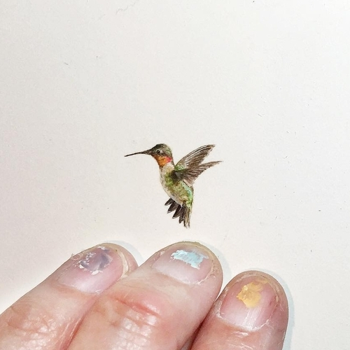 10-Hummingbird-Karen-Libecap-Star-Wars-&-other-Miniature-Paintings-and-drawings-www-designstack-co