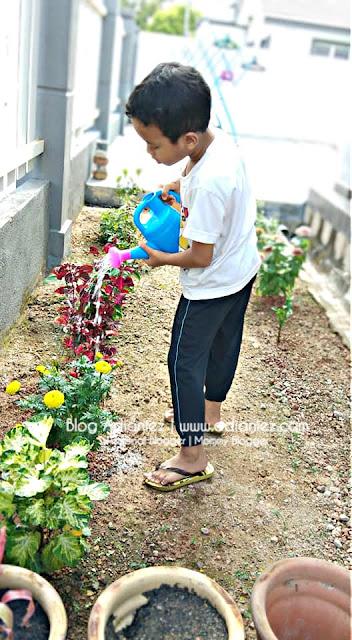 Taman @ Kebun Mini Di Tepi Rumah | Mudahkan Izzat Nak Menyiram Pokok