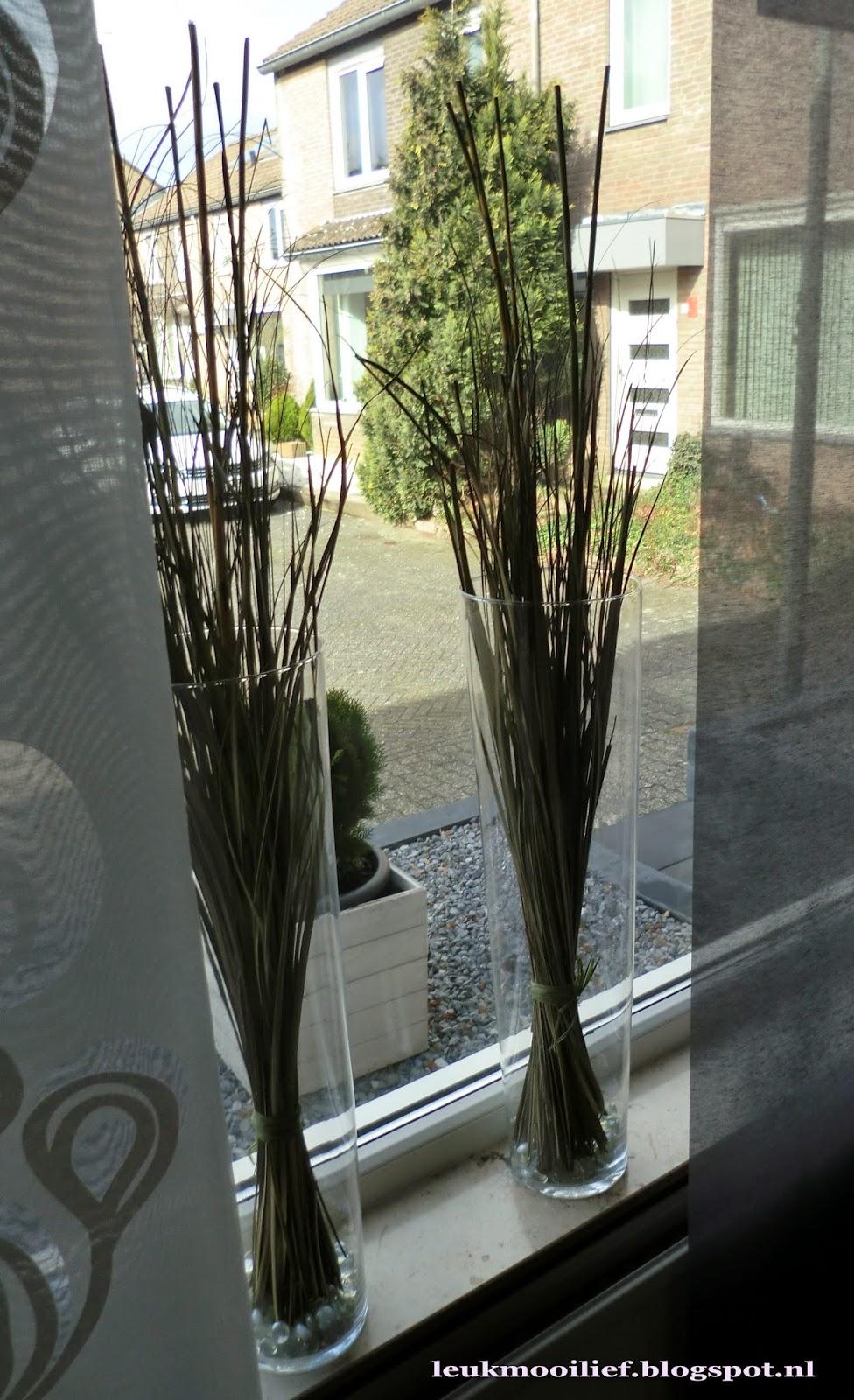 Leuk mooi lief hoge vazen met gras for Decoratie raam