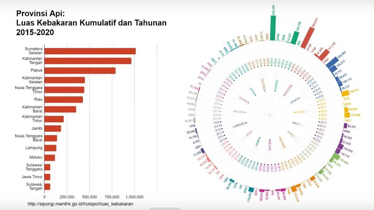 provinsi api di Indonesia