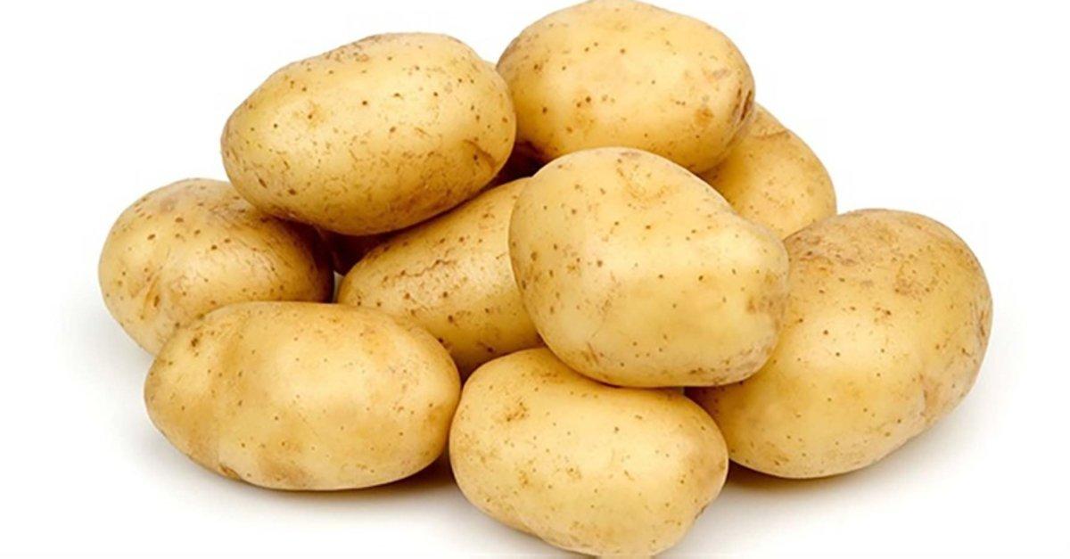 Yuxuda Kartof Gormək Yuxunun Mənasi Yuxu Yozmalari